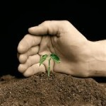 4 qualities of a great Lead Nurturing Program